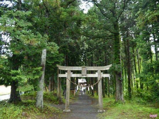 Nhật: Ngôi đền chữa bệnh trĩ